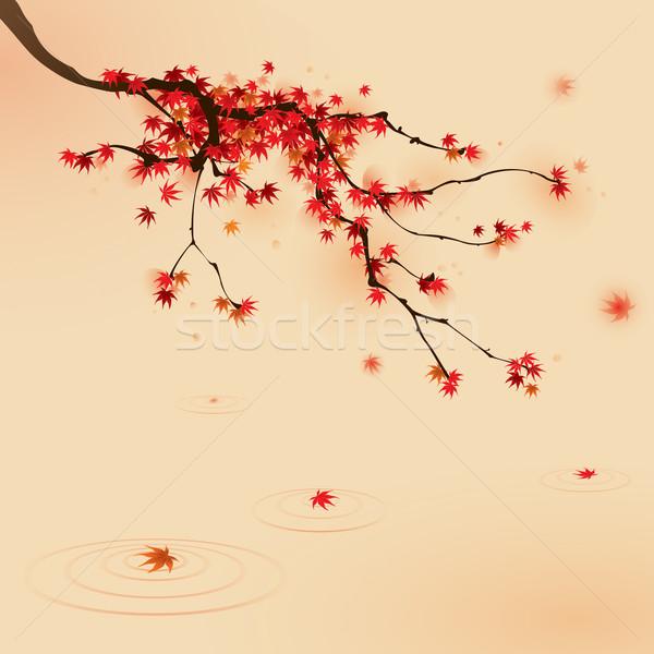 красный клен дерево осень Японский Сток-фото © ori-artiste
