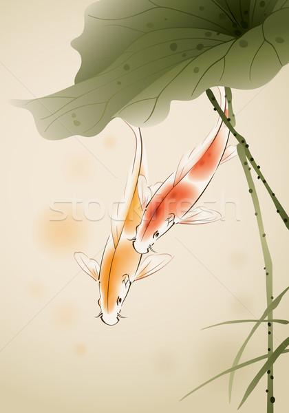 Koi halfajok lótusz tavacska úszik ecset Stock fotó © ori-artiste