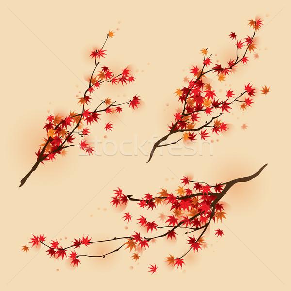 красный клен осень три различный Сток-фото © ori-artiste
