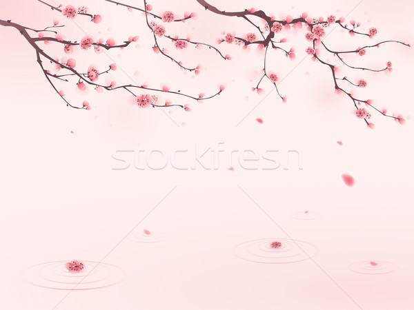 Stock photo: oriental style painting, cherry blossom in spring