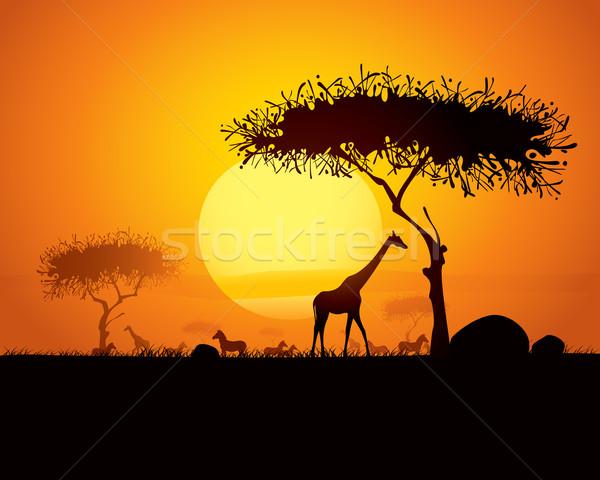 Nyugalmas naplemente jelenet Afrika sziluett állatok Stock fotó © ori-artiste