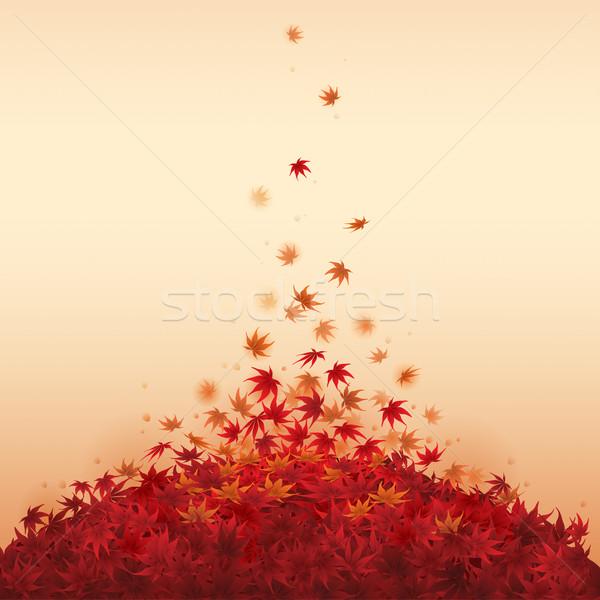 őszi levelek zuhan piros juhar levelek föld Stock fotó © ori-artiste