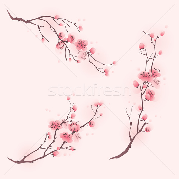 Távolkeleti stílus festmény cseresznyevirág tavasz virágok Stock fotó © ori-artiste