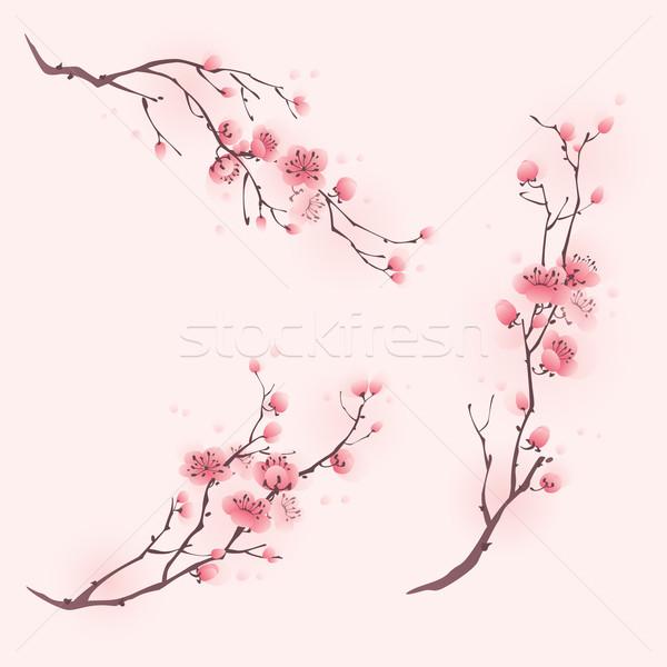 стиль Живопись Cherry Blossom весны цветы Сток-фото © ori-artiste