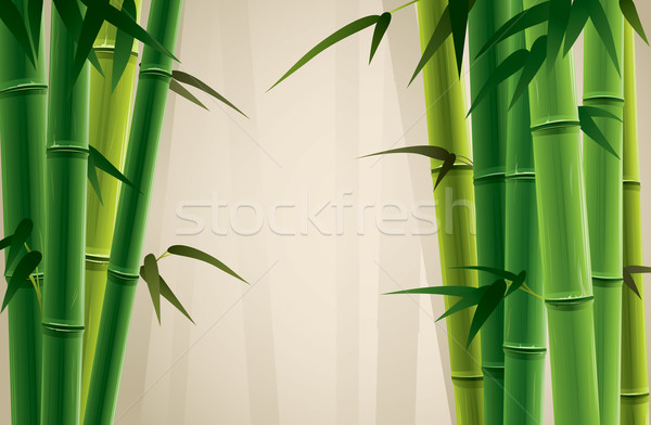 Bamboo Grove Stock photo © ori-artiste