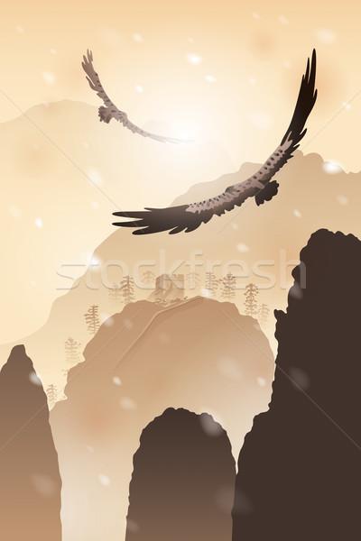 Иглз Flying гор воды цвета Сток-фото © ori-artiste
