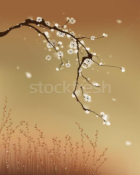 Távolkeleti stílus festmény szilva virág szél Stock fotó © ori-artiste