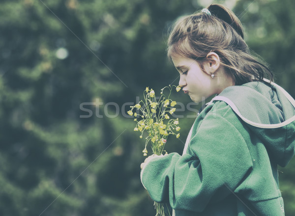 Little girl in nature smelling bunch of flowers Stock photo © orla