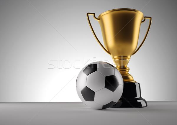 Fotball champion trophy Stock photo © orla