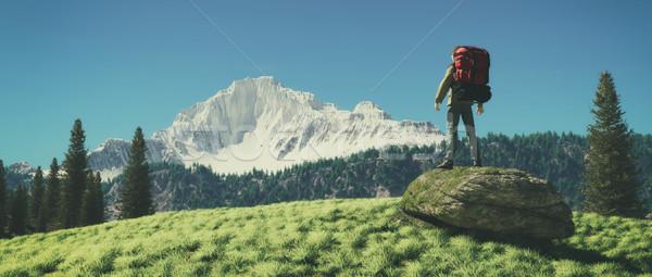 Viajante admirar montanha cenário 3d render ilustração Foto stock © orla