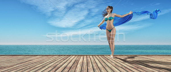若い女の子 青 水着 木製 桟橋 3dのレンダリング ストックフォト © orla