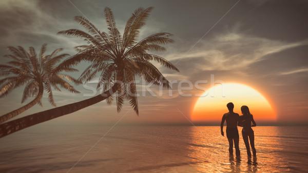 Siluet plaj yürüyüş okyanus gün batımı Stok fotoğraf © orla