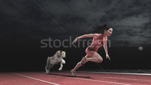 Stockfoto: Race · vrouw · cheetah · atleet · lopen · track