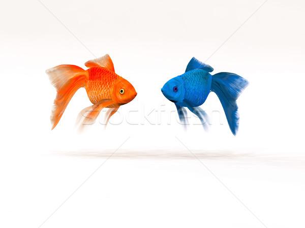 Iki akvaryum balığı 3d render örnek balık soyut Stok fotoğraf © orla