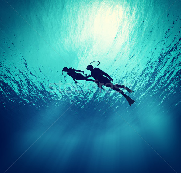 Dives swim under wate Stock photo © orla