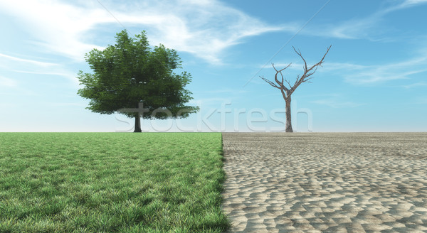 Verdant landscape or dry landscape Stock photo © orla