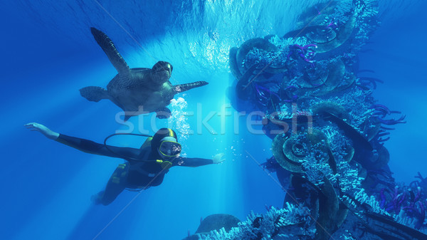 Diver and giant turtle  Stock photo © orla