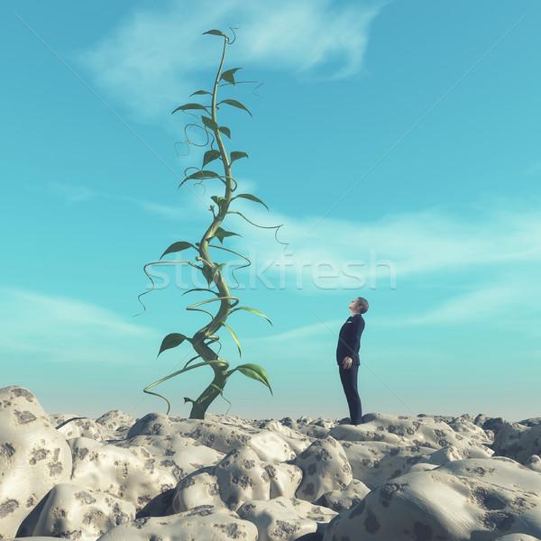 Man admiring a big beanstalk. Stock photo © orla