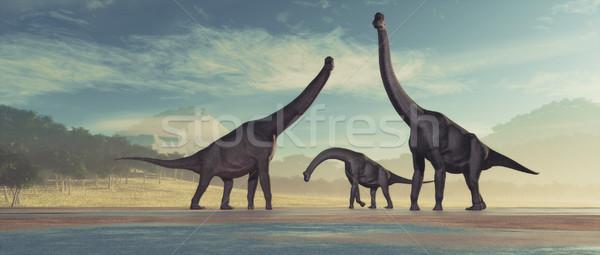Family of dinosaurs Stock photo © orla
