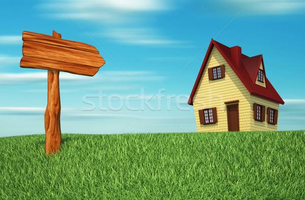 Indicator grass house Stock photo © orla