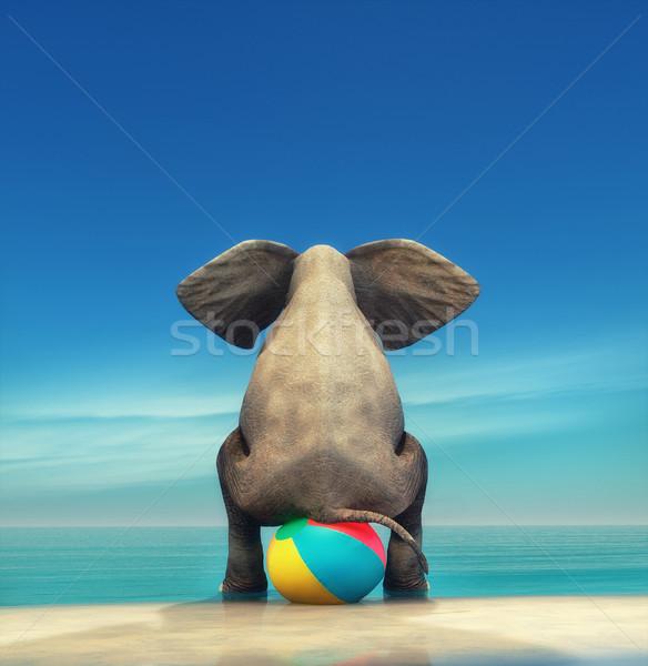 Olifant strandbal 3d render illustratie strand natuur Stockfoto © orla