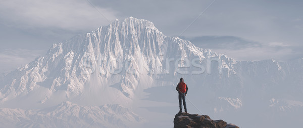 Junger Mann up Berg bewundern Landschaft Winter Stock foto © orla