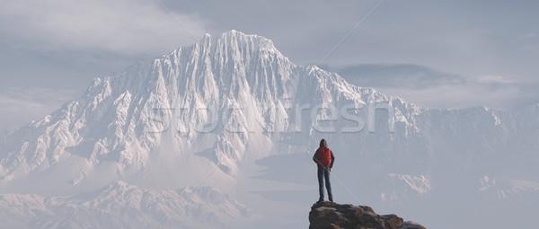 Moço para cima montanha admirar cenário inverno Foto stock © orla