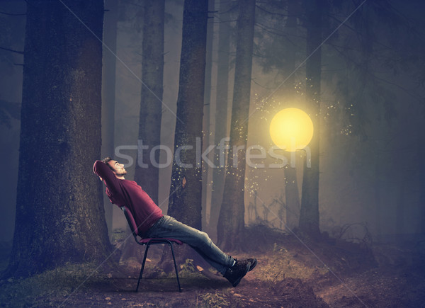 Man vergadering stoel bos kijken fairy Stockfoto © orla