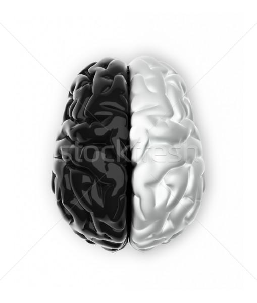 ума мозг черно белые подобно 3d визуализации медицинской Сток-фото © orla
