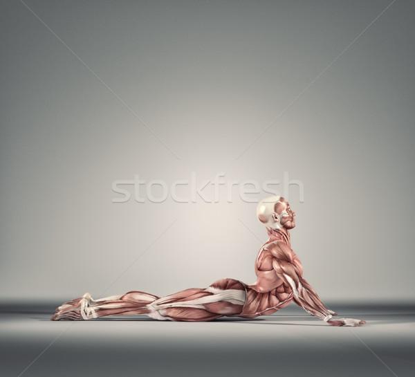 ストックフォト: 筋肉の · 男 · 地上 · 3dのレンダリング · 実例 · スポーツ