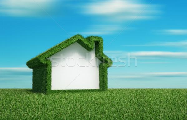 Groen gras veld huis 3d render illustratie hemel Stockfoto © orla