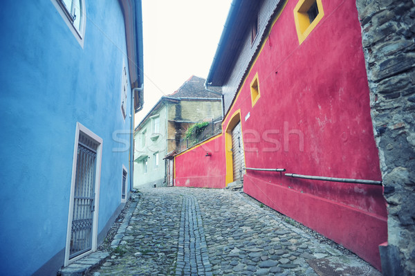 Small street paved Stock photo © orla
