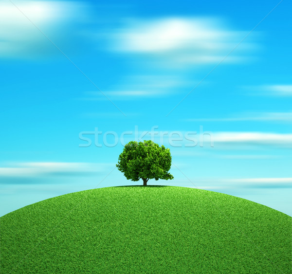 Stock photo: The tree