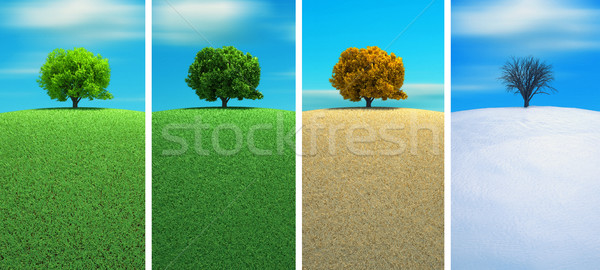 Négy évszak fa 3d render tavasz tájkép nyár Stock fotó © orla