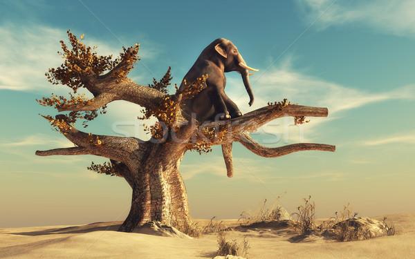 éléphant sécher arbre paysage rendu 3d Photo stock © orla