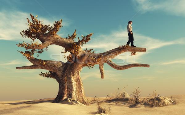 Man climbed a big tree Stock photo © orla