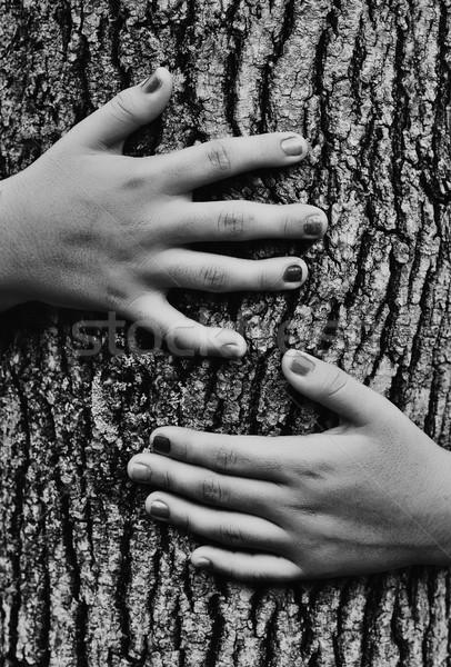 Meisje boom hand liefde gelukkig Stockfoto © orla