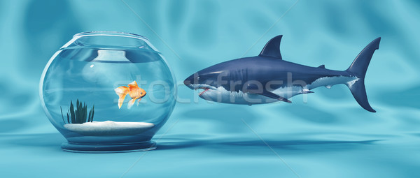 Golden Fish in a bowl  Stock photo © orla