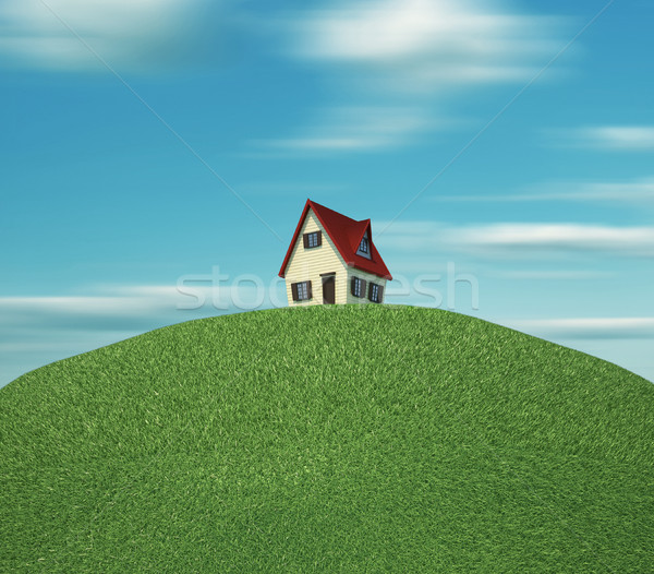House on hill Stock photo © orla