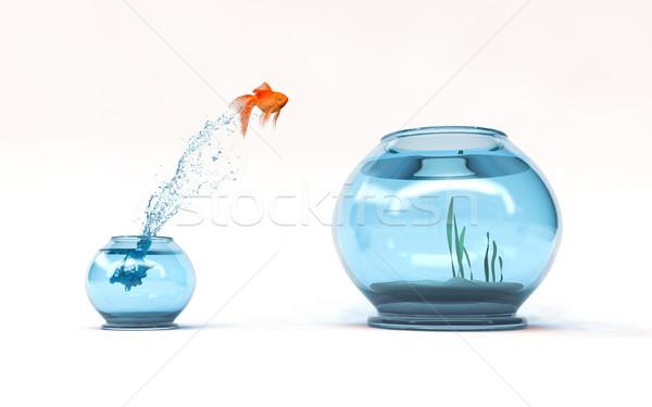 прыжки уровень Goldfish чаши стремление Сток-фото © orla