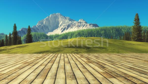 Vista terraza montana paisaje 3d Foto stock © orla