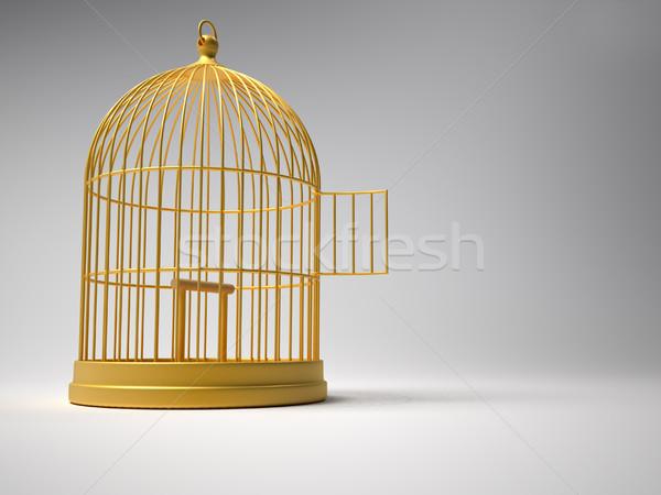 Madárkalitka 3d render illusztráció arany ház madár Stock fotó © orla