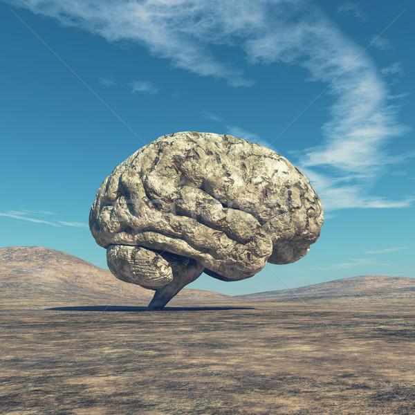 Emberi agy kép nagy kő forma 3d render Stock fotó © orla