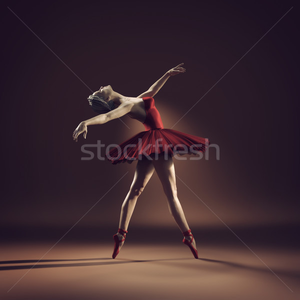 Young and beautiful ballerina Stock photo © orla
