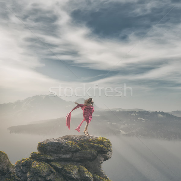 Girl in pink dress up on a rock  Stock photo © orla