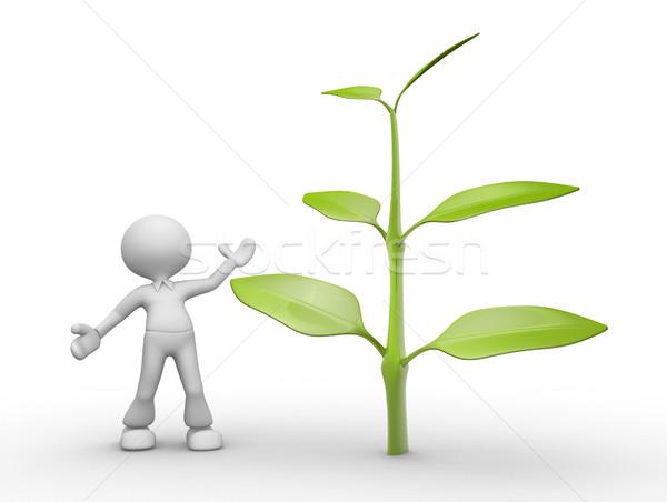 Planta 3d pessoas homem pessoa flor árvore Foto stock © orla