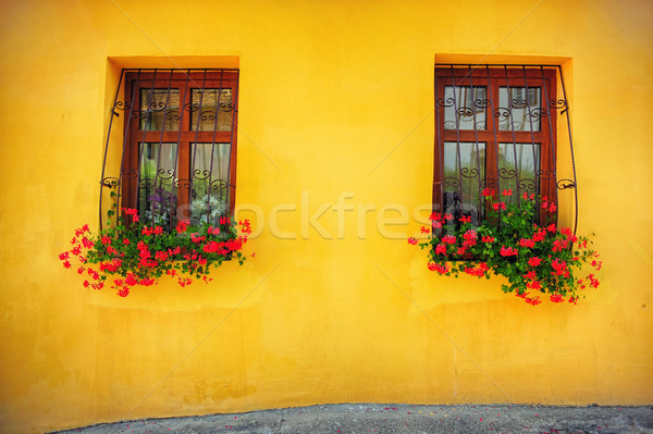 Wooden windows decorated with flowers  Stock photo © orla