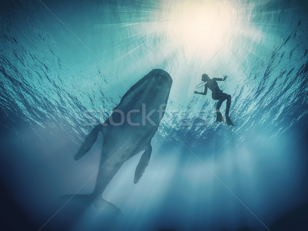 Stock photo: Scuba divers