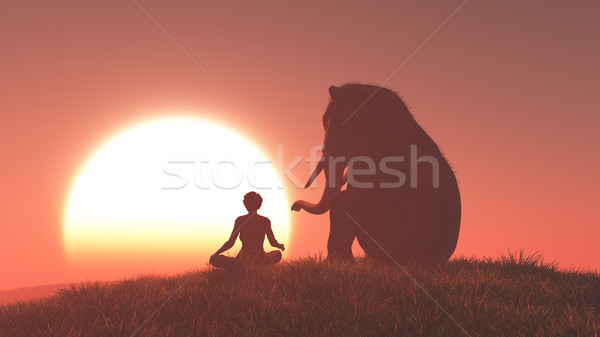 Sillouthe elephant and woman Stock photo © orla
