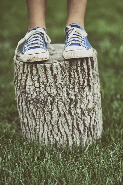 Girl standing on a tree stump Stock photo © orla